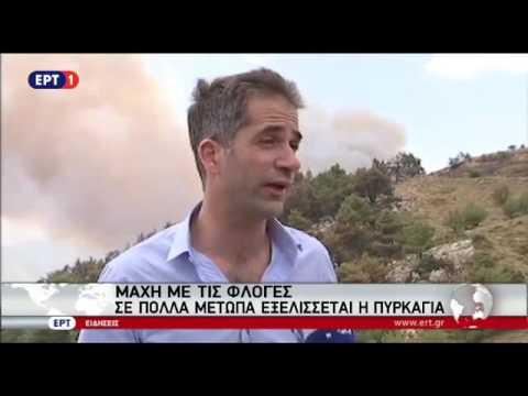 Δήλωση Κ. Μπακογιάννη για την πυρκαγιά στη Βοιωτία