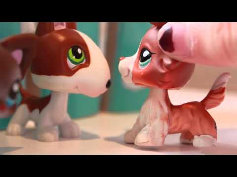 "LPS Friendly Complications Season 2 Episode 2 ""Eyes for Another"""