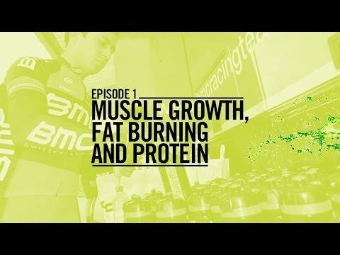 Fuel para el Tour: Crecimiento muscular, quema de grasas y proteínas - Nutrición Team BMC