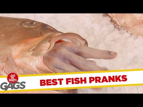 Best Fish Pranks – Best of Just for Laughs Gags