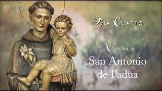 DÍA 4 - NOVENA SAN ANTONIO DE PADUA