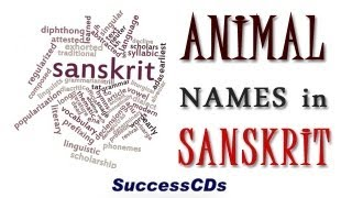 Animal Names in Sanskrit by SuccessCDs Education Channel http://www.youtube.com/successcds1. Learn Sanskrit online with Shyam Chandran. All the ...