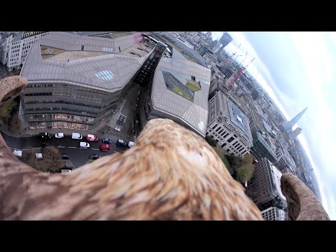 Incredible GoPro footage offers a true bird's eye view of London
