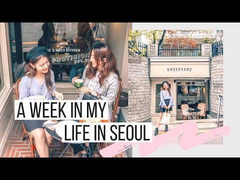 Week In My Life In Seoul | JYP, FNC + Bumping Into Kpop Idols + Hongdae Shopping | Korea Vlog #31