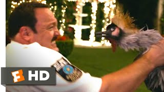 Paul Blart: Mall Cop 2 (2015) - Man vs. Bird Scene (4/10) | Movieclips