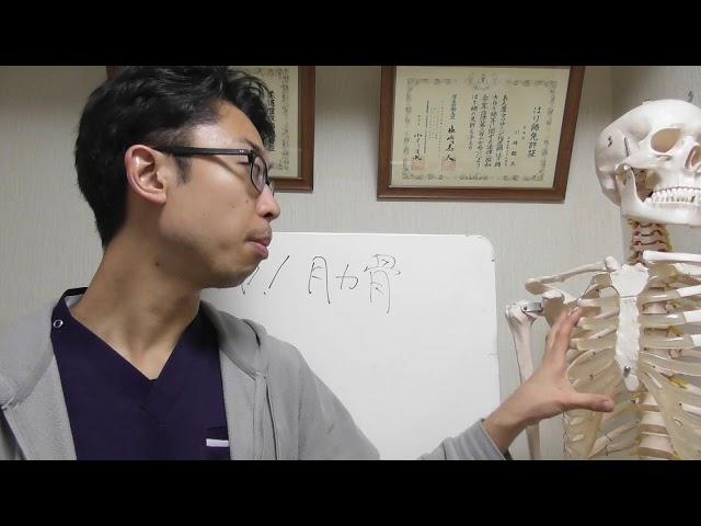 肋骨が肩の痛みを引き起こす??