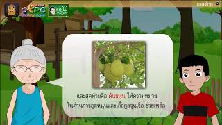 สื่อการเรียนการสอน บทอ่านเสริมเติมความรู้เรื่อง ไม้มงคล ป.6 ภาษาไทย