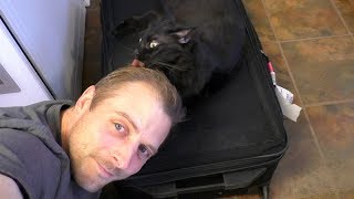 Download Youtube: Welcome Home Cat Daddy!