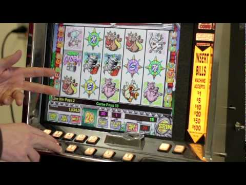 Slots Tutorial: The rate of wins on multi-line slot machines.