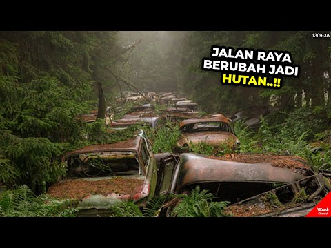 MACET 70 TAHUN, JALAN RAYA BERUBAH JADI HUTAN, MOBIL BERUBAH JADI RONGSOKAN..!! #YtCrash