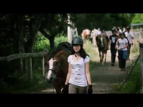 Séjour équestre et linguistique en Espagne