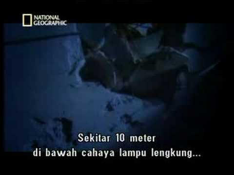Seconds From Disaster – Hotel Collapse Singapore [พากย์ไทย]