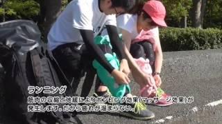 サクラ咲くまくら使用例 ランニング・空手編
