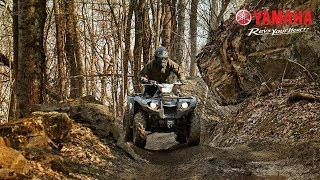 9. 2018 Yamaha Kodiak 450 - Real World Capability