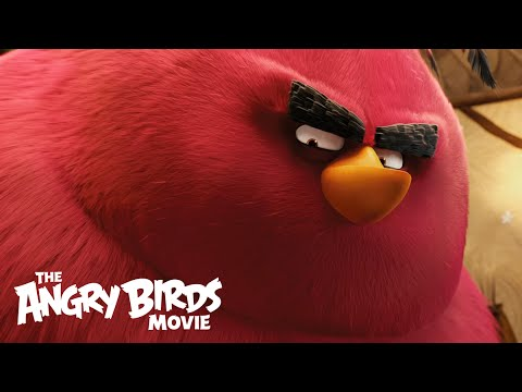 Angry Birds (Clip 'Meet Terence')