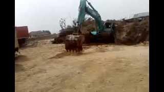 Excavator Kobelco PC 200 Tambang Pasir Purwakarta Mau Naik Susah