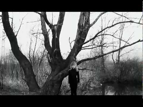 Tekst piosenki Steven Wilson - The 78 po polsku