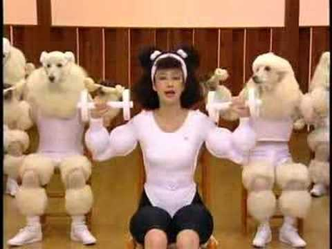 Very funny! Poodle Exercise with Humans
