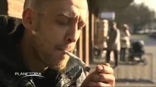 Les Tourrettes France  city photo : Le Syndrome de Gilles de la Tourette et le Cannabis
