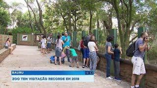 Zoológico de Bauru registra recorde com mais de 330 mil visitas em 2018