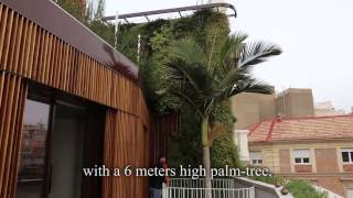 Vertical gardens around the world - Murcia (part 4)