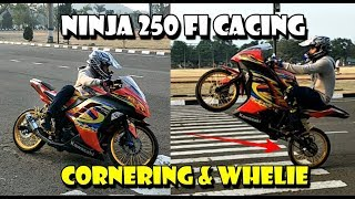 Video Ninja Jarijari 250 Fi Ban Cacing Cornering & Wheelie Ng1Lu MP3, 3GP, MP4, WEBM, AVI, FLV April 2019