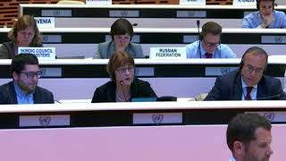 Sylvia Beales's Intervention at ECE Regional Forum, 2017:http://webtv.un.org
