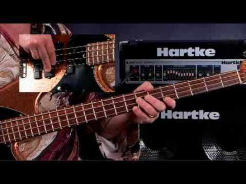 How To Play Bass Guitar – Lessons for Beginners – Chromatic Scales & Accidentals