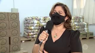Aumenta procura por cestas básicas e doações diminuem em Bauru