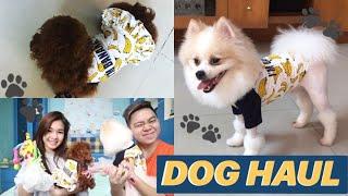 Video Bajunya Couple 😍🍌 | DOG HAUL MP3, 3GP, MP4, WEBM, AVI, FLV Juni 2019