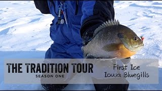 """In the first episode of The Tradition Tour Staffer Adam Bartusek travels down to Iowa with guest hosts Aaron Knott and Zach Tembreull in pursuit of some first ice bluegills.Edited by Sam SobieckJigs:Clam Pro Tackle Drop Jig 1/64oz. Goldhttp://stores.clamoutdoors.com/clam/tackle/jigs/drop-jig.htmlClam Pro Tackle Duckbill Drop Jig 1/32oz. Goldhttp://stores.clamoutdoors.com/clam/tackle/jigs/duckbill-drop-jig.htmlRods:Baitrunner 28"""" Noodlehttp://www.dhcustomrods.com/product-page/ab08a80b-f883-4e4c-14ce-78f39f2d395bBaitrunner 26"""" UL Carbonhttp://www.dhcustomrods.com/product-page/d5dc8573-e04e-9394-4533-5dfbb34965b5DH Custom Rods Pannie Drop'rhttp://www.dhcustomrods.com/product-page/9db86ea9-e5c4-af90-7f72-39636bcd6e4bReels:Clam Dave Genz Spooler Elitehttp://www.gandermountain.com/modperl/product/details.cgi?pdesc=Clam-Dave-Genz-Ice-Spooler-Elite-Series-Ice-Combo-25-Light&i=789014House:Clam Yukon X Thermalhttp://www.gandermountain.com/modperl/product/details.cgi?pdesc=Clam-Yukon-X-Thermal-Fish-Trap-Ice-Shelter&i=906464Suit:Ice Armor by Clam Lift Suit Bibshttp://www.gandermountain.com/modperl/product/details.cgi?pdesc=Clam-Mens-Ice-Armor-Lift-Bib&i=1020701Ice Armor by Clam Lift Suit Parkahttp://www.gandermountain.com/modperl/product/details.cgi?pdesc=Clam-Mens-Ice-Armor-Lift-Parka&i=1020700Flasher:Vexilar FLX-28http://www.gandermountain.com/modperl/product/details.cgi?pdesc=Vexilar-FLX-28-Pro-Pack-II-Flasher-with-ProView-Ice-Ducer&i=756522Auger:8"""" K-Drill w/ Milwaukee M18 Fuelhttp://icefishingtoday.com/ice-fishing-products/k-drill-electric-ice-auger-system/"""