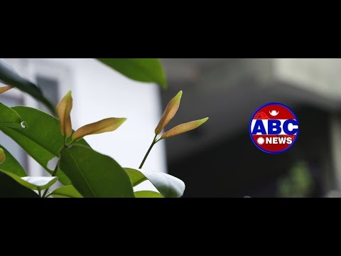 (ABC NEWS NEPAL LIVE)