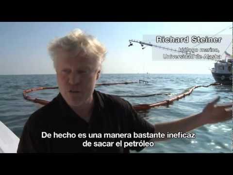 Derrame en el Golfo de México (parte 2)