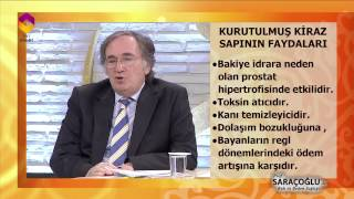 Kiraz Sapı'nın Faydaları - Tıbbi Bitkiler - Prof. Dr. İbrahim Saraçoğlu