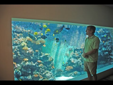 Guy Builds Huge 30 000 Liter Aquarium In His Living