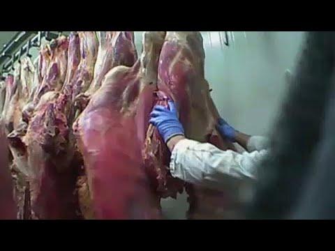 Εξαγωγές ύποπτου πολωνικού κρέατος σε χώρες της ΕΕ