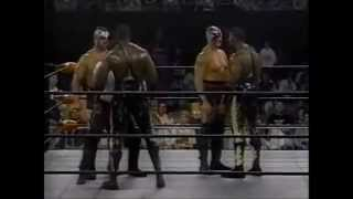 Harlem Heat vs The Road Warriors