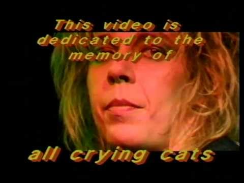 NOISE MILLERS – Credits for Cat is cryin'