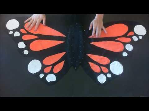 {DIY} costume express de papillon - Express costume of butterfly