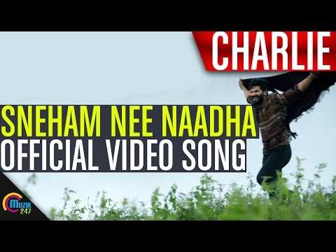 Sneham Nee Naadha Song From Charlie