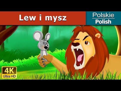 Lew i mysz | Bajki na Dobranoc | Bajki dla Dzieci | Polish Fairy Tales