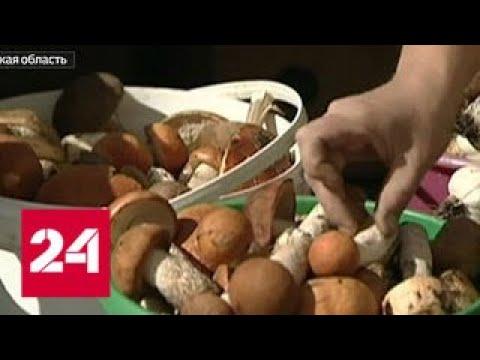 Вести. Дежурная часть от 19 сентября 2018 года  - Россия 24 - DomaVideo.Ru