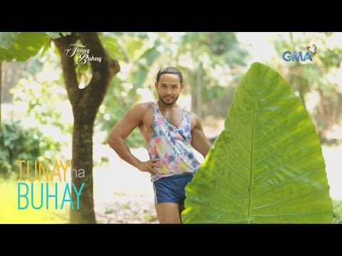 Video Tunay na Buhay: Diet tips a la Rogelia download in MP3, 3GP, MP4, WEBM, AVI, FLV January 2017
