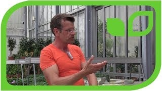 #1064 Karl Ploberger über Mulchen Rasenschnitt und Kompost