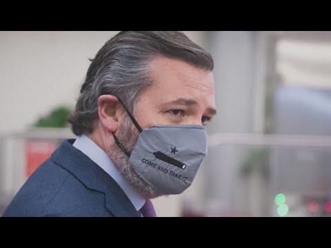 Calls for U.S. Sen. Ted Cruz to resign come after U.S. Capitol riot