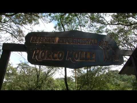 Viajeros: Reserva Experimental de Horco Molle
