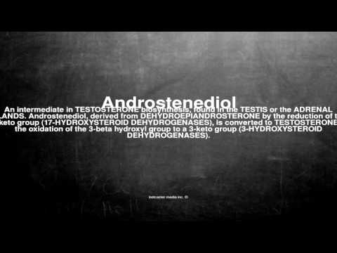 Medical vocabulary: What does Androstenediol mean