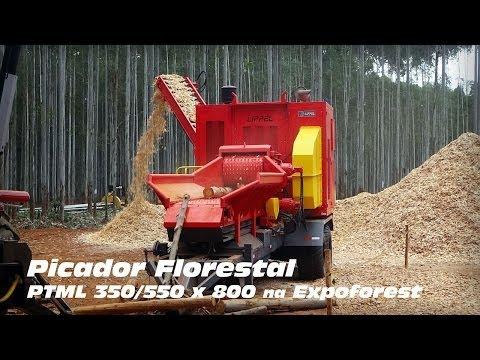 Picador Florestal PTML 350/550 x 800 triturando toras de eucalipto na Expoforest