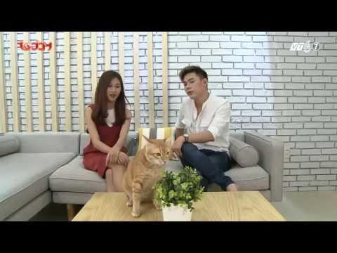 Kỳ 1: Đại Nhân cùng những chú mèo đáng yêu - ThucungTV