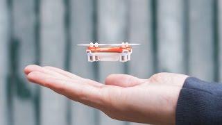 Le plus petit quadricoptère du monde en vidéo